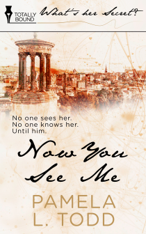 Book Cover for Now You See Me by Pamela L. Todd